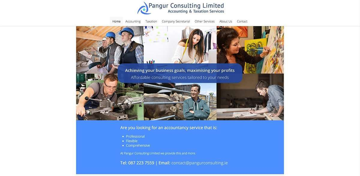 Pangur consulting website